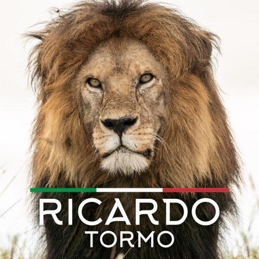Ricardo Tormo Travel